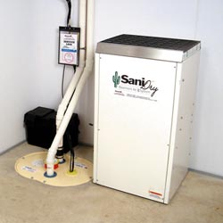 An ENERGY STAR® Rated basement dehumidifier installed in a home in Rochester
